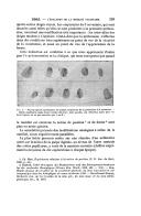 עמוד 599