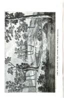 עמוד 320