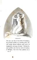 עמוד 191