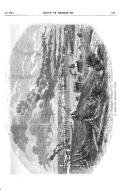 עמוד 511