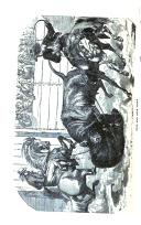עמוד 236