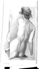 עמוד 336
