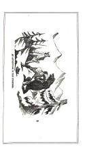 עמוד 457