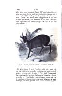 עמוד 414
