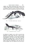 עמוד 451