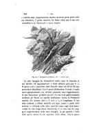 עמוד 564