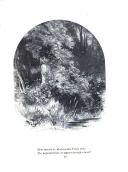 עמוד 215