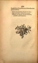עמוד 58