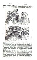 עמוד 137