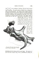 עמוד 1389