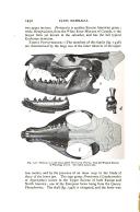 עמוד 1452