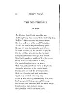 עמוד 20