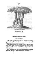 עמוד 37
