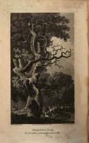 עמוד 478