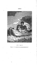 עמוד 2