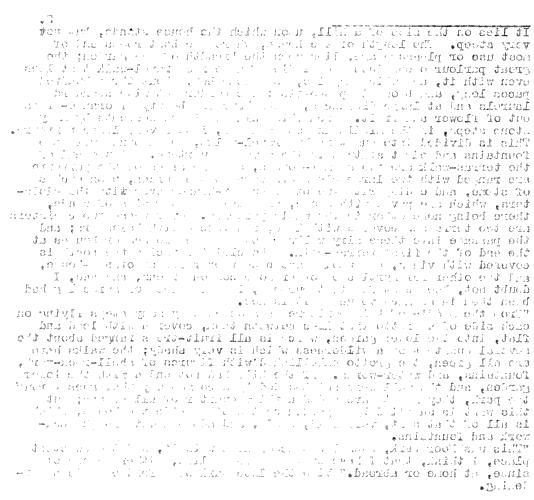 [subsumed][ocr errors][ocr errors][ocr errors][ocr errors][ocr errors][ocr errors][subsumed][ocr errors][subsumed][ocr errors][ocr errors][ocr errors][ocr errors][subsumed][subsumed][ocr errors][ocr errors][ocr errors][ocr errors][ocr errors][ocr errors][ocr errors][subsumed][subsumed][ocr errors][ocr errors][merged small]
