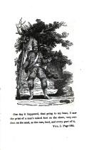 עמוד 246