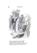 עמוד 164