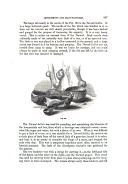 עמוד 347