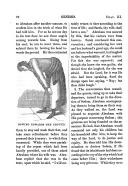 עמוד 22