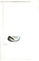 עמוד 520