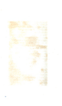עמוד 196