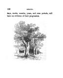 עמוד 120
