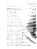 עמוד 221