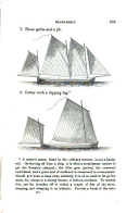 עמוד 343