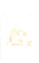 עמוד 240